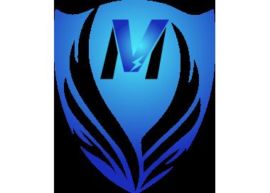 Velectrik Moov
